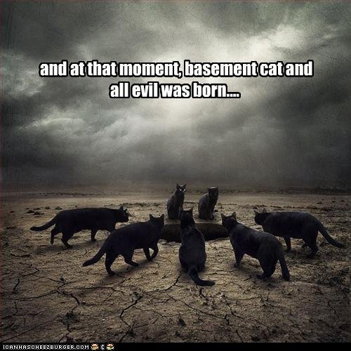 And at that moment, basement cat and evil was born