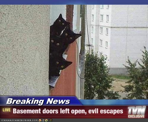 Breaking News : Basement cats escape
